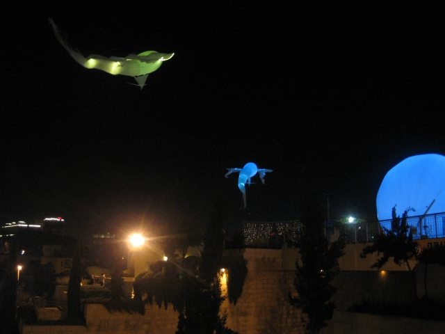 Flying fish at Jaffa Gate